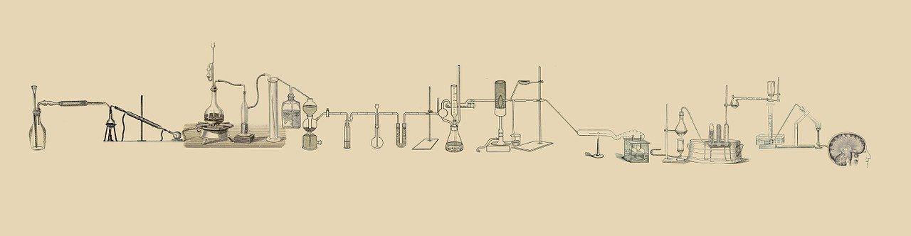 lab-512503_1280.jpg