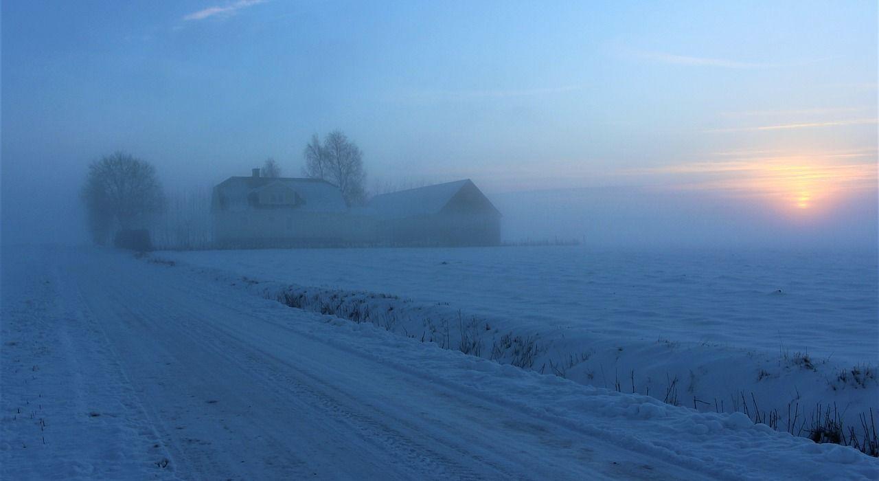 mist-3176424_1280.jpg