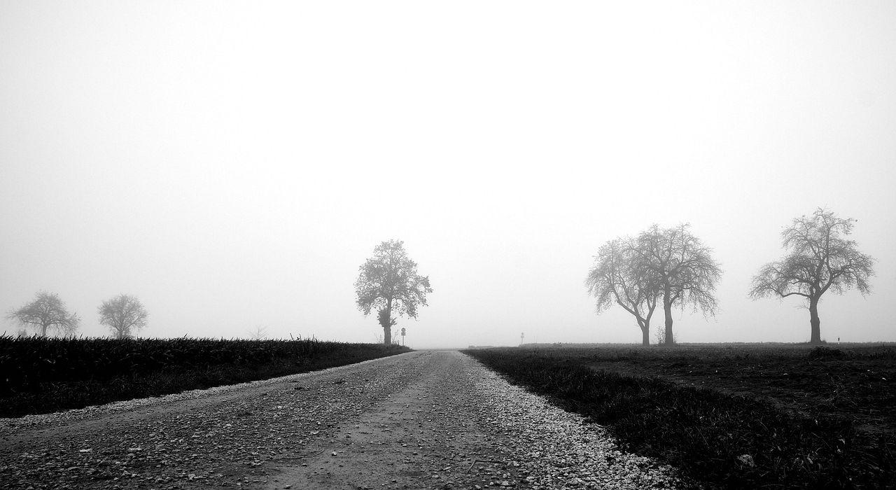 lane-4573326_1280.jpg